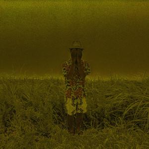 【個展のお知らせ】蝶次元 ー此岸と彼岸の間で  櫻田宗久の画像