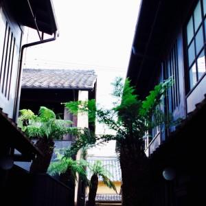 四季十楽 #kyoto #hotel #friendの画像