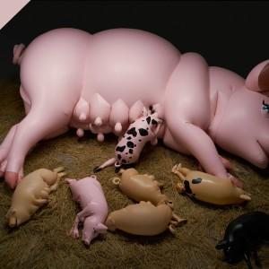 「Pigpen」開催記念番組:サエボーグ解体新書レポート@DOMMUNEの画像