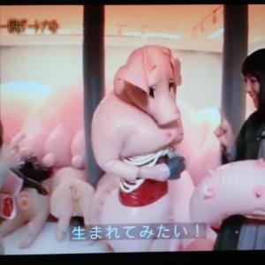 「吉岡里帆と一晩アートナイト」@フジテレビに出演の画像