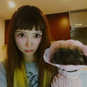最近のめそさん♡の画像