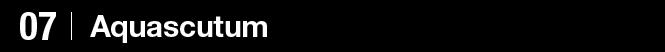 07 Aquascutum