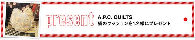 apc_present_btn