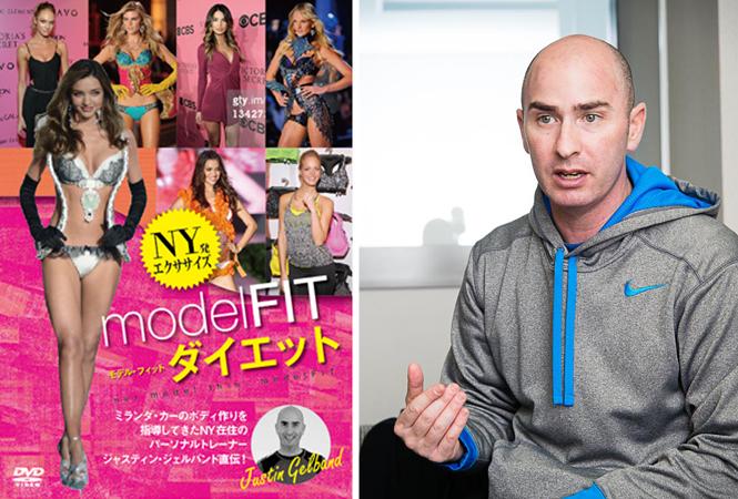 model fit