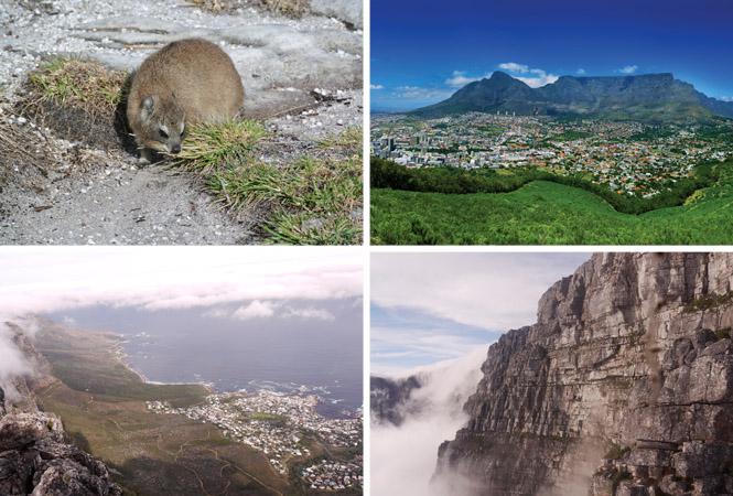 もっと知りたい南アフリカ!