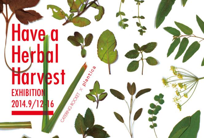食と植物の可能性を探る「Have a Herbal Harvest」展開催