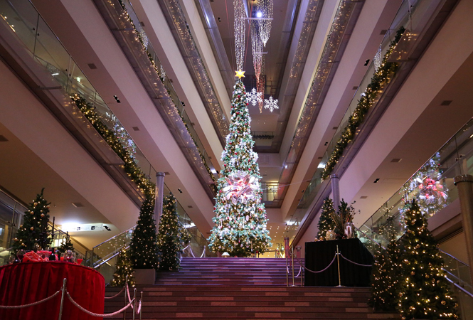 圧巻のイルミネーションにおしゃれマーケットが出現。今年のクリスマスは表参道ヒルズにGO!