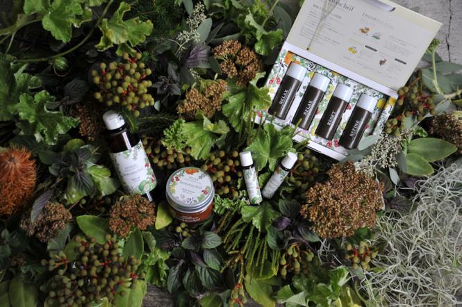乾いた冬の肌を潤す「ボタニッシュエール」から大人のための新アイテム登場