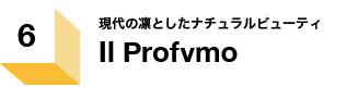 Il Profvmo