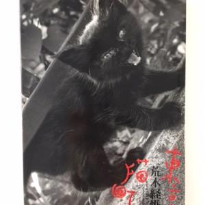 東京猫町 荒木経惟