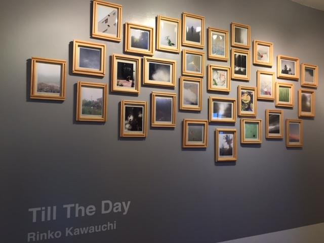 kawauchi rinko-photo exhibition
