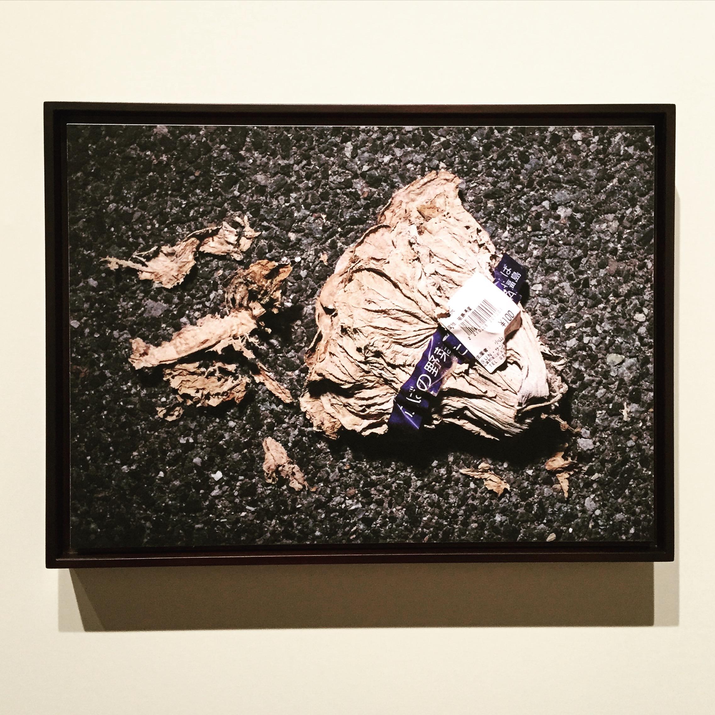 chanel photo exhibition fukushima