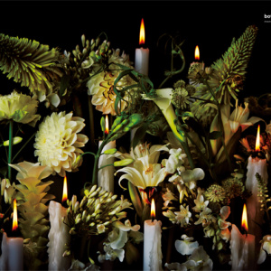 numerotokyo 100 flower