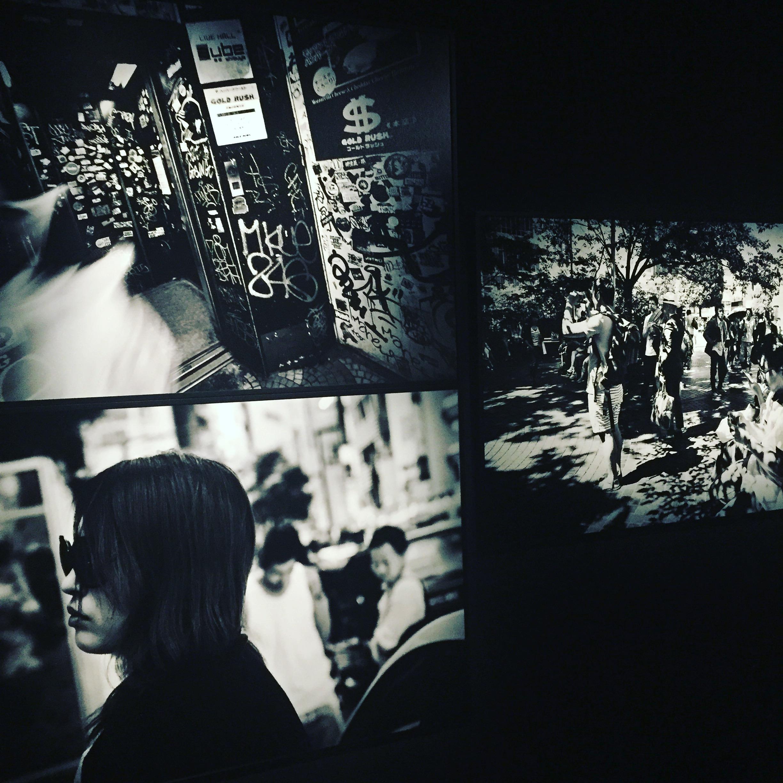 exhibition photographe