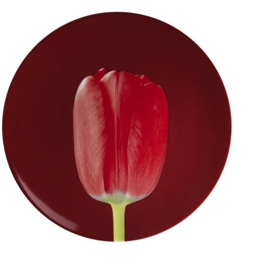 "Assiette au motif de Robert Mapplethorpe ""Tulip"", 1988. By Ligne Blanche Paris, porcelaine de Limoges, Made in France."