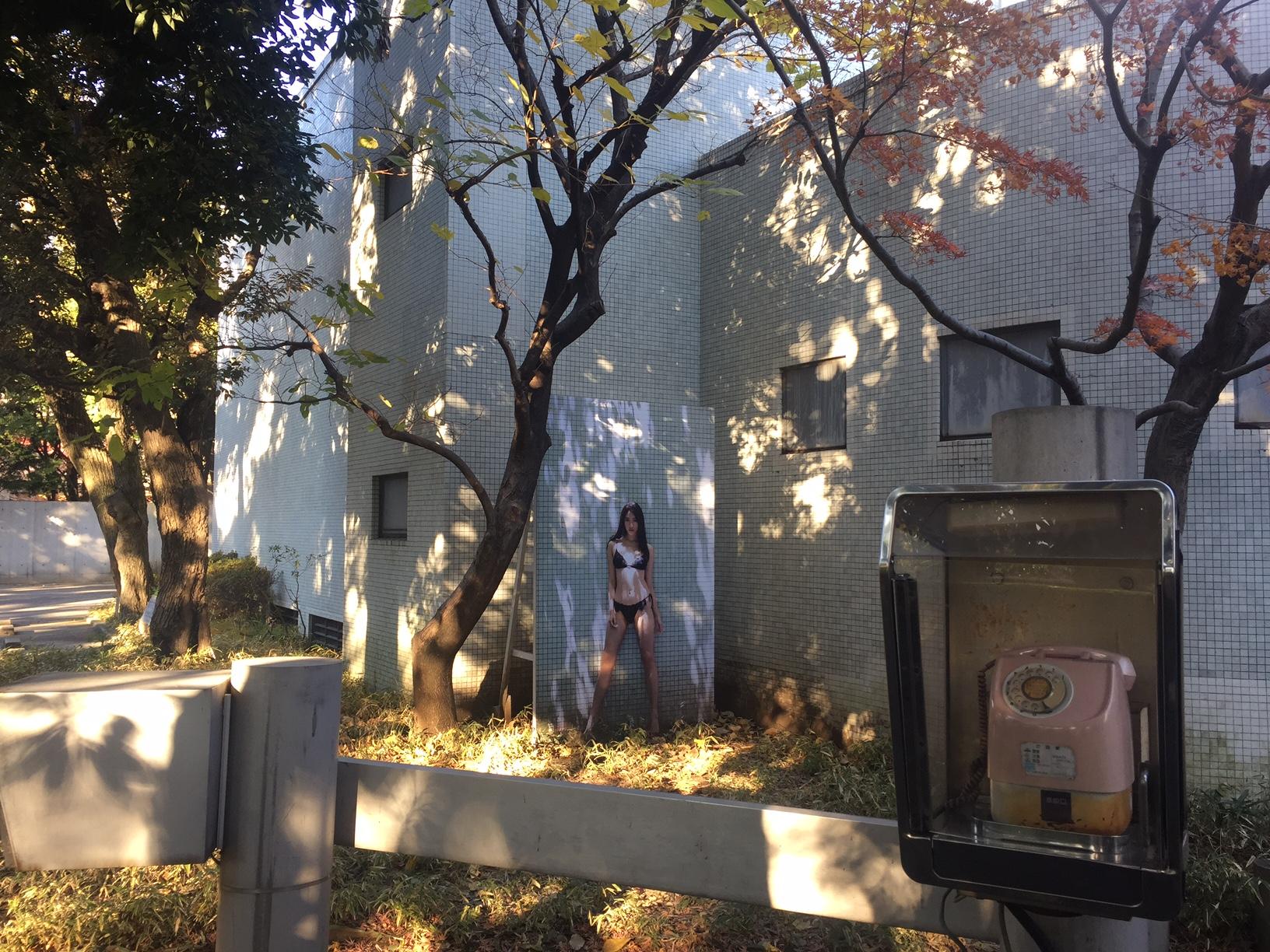 篠山紀信 写真展 快楽の館