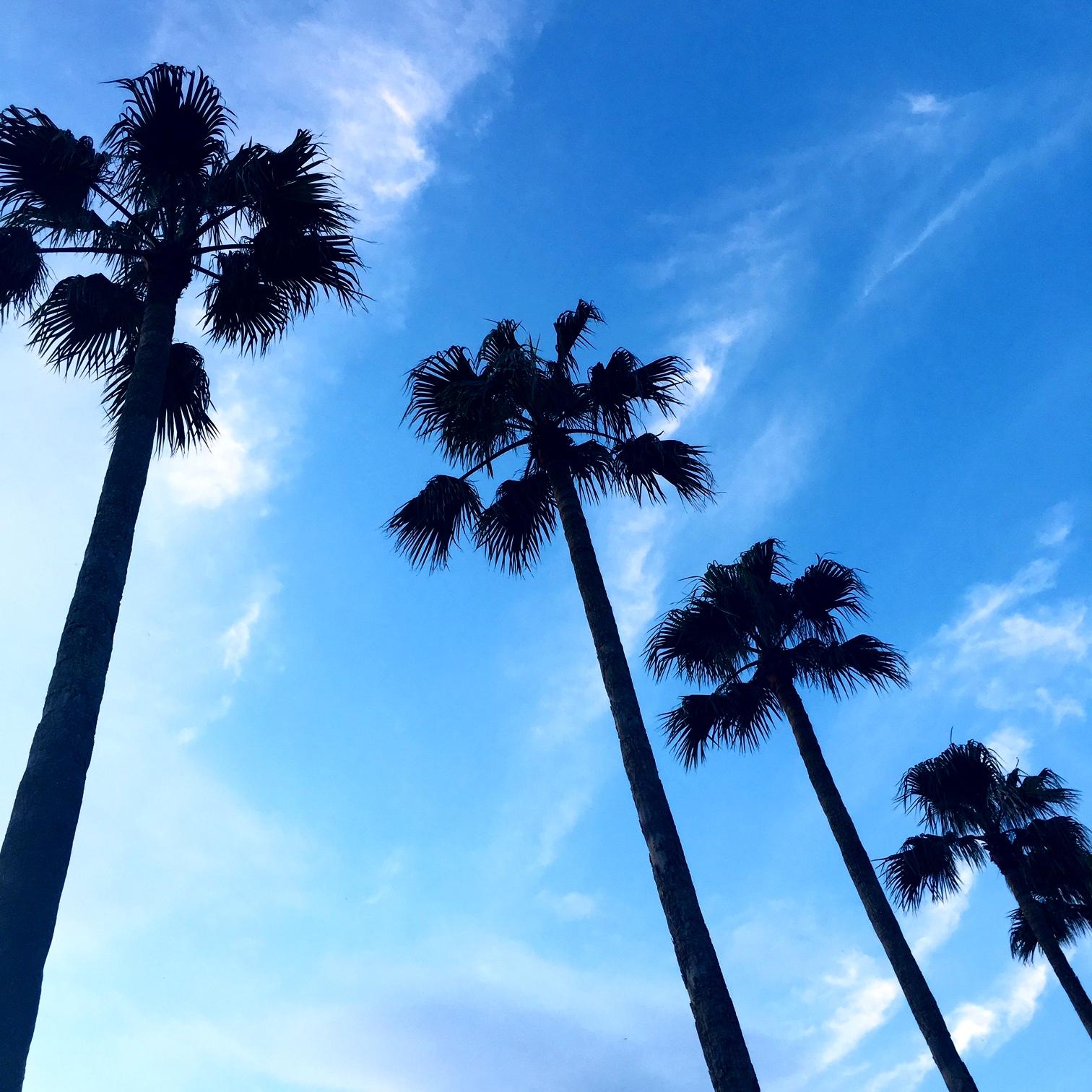 鎌倉, 逗子,湘南, 海,beach,ビーチ
