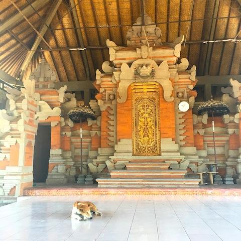 寺院の外では犬が贅沢にお昼寝中。