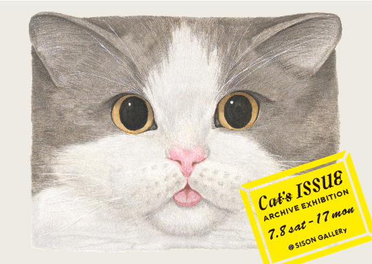 猫,ネコ,Cat's ISSUE,SISON GALLERy