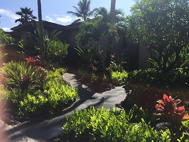 hawaii_02