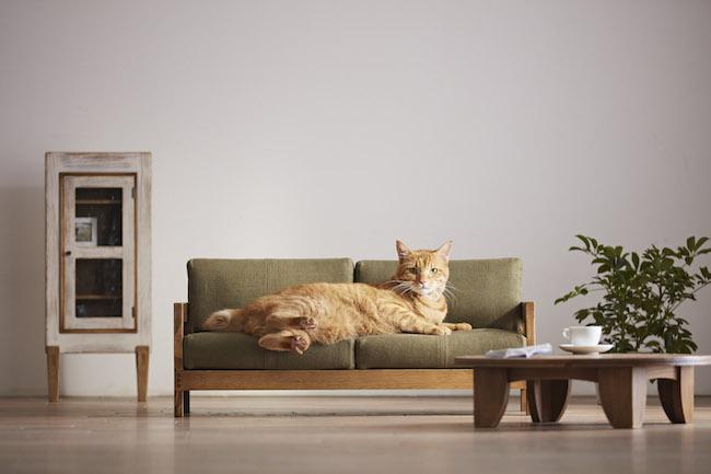 ネコ家具,大川家具