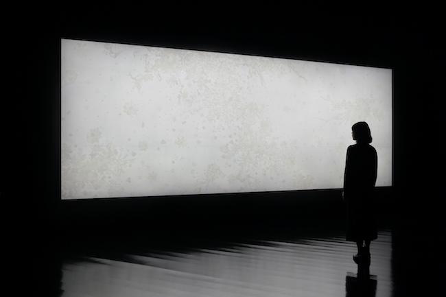 大巻伸嗣 Echoes-Crystallization -ひかりの風景 ちの記憶- 2018年 (c)Shinji Ohmaki Studio  撮影:椎木静寧