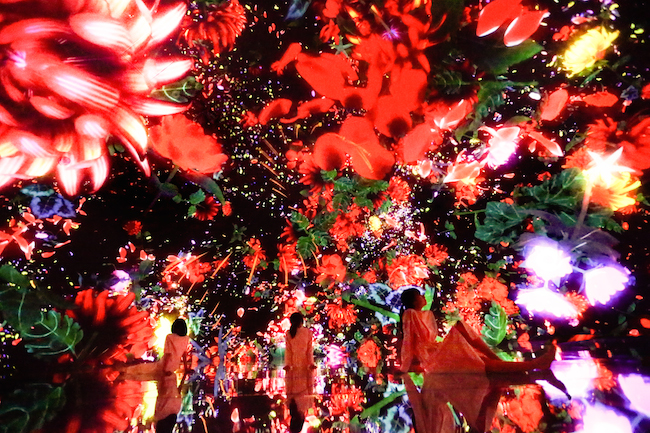 『Floating in the Falling Universe of Flowers』©︎teamLab