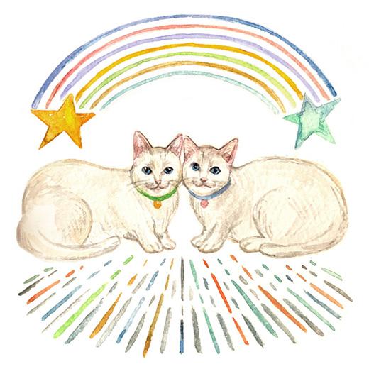 猫星ラピスが占う、今月の運勢「双子座」