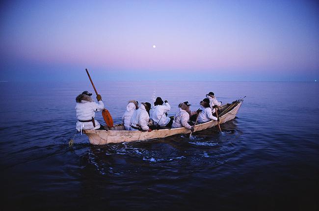 白夜の北極海にクジラを追う 撮影:星野道夫 ©Naoko Hoshino