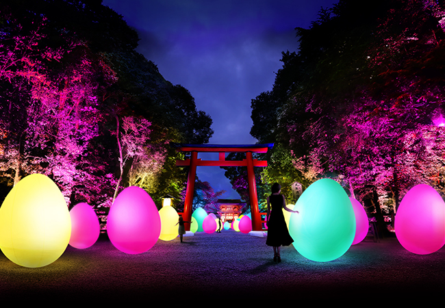 Resisting and Resonating Ovoids and Forest–Forest of Tadasu at Shimogamo Shrine teamLab, 2018/teamLab is represented by Pace Gallery
