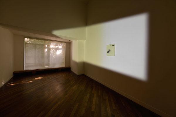 本展の新作インスタレーション © Lee Kit, courtesy the artist and ShugoArts 撮影:武藤滋生
