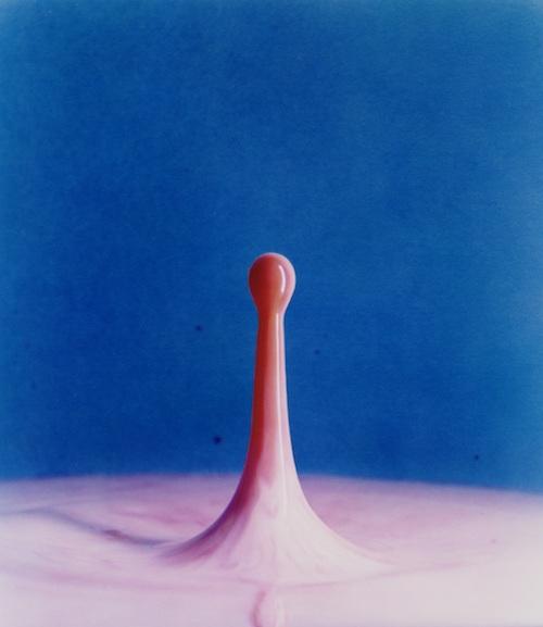 ハロルド・ユージン・エジャートン 《ミルクの中に落としたクランベリージュース》 1960年 ダイ・トランスファー・プリント ©2010 MIT. Courtesy of MIT Museum