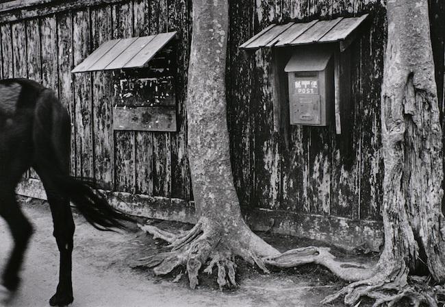 木村 伊兵衛《秋田市追分・板塀》1953年 ゼラチン・シルバー・プリント