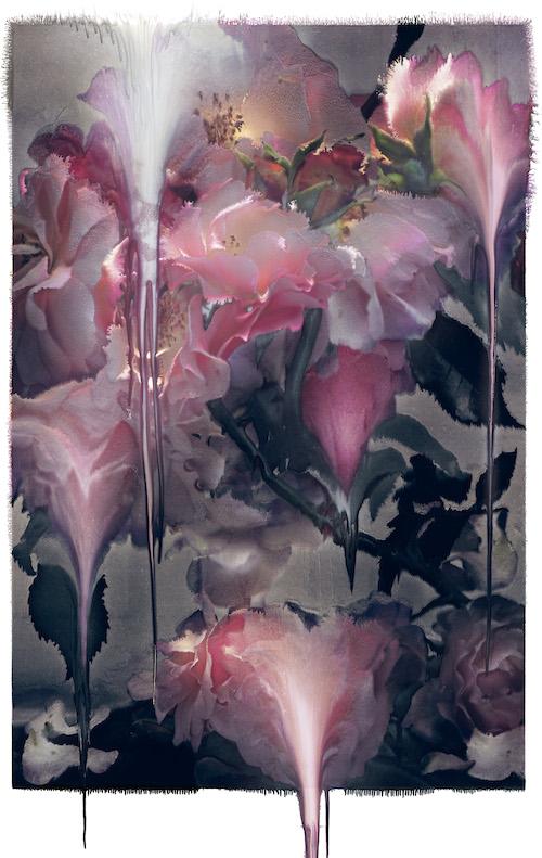 『Rose VI』(2012) ©Nick Knight
