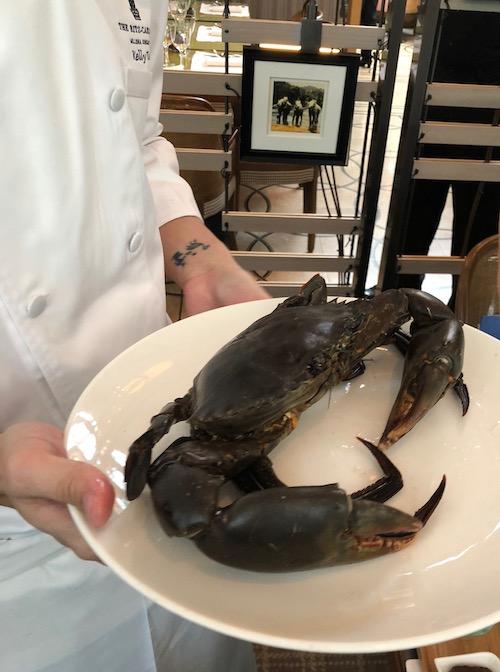 シェフが特別に見せてくれた立派な蟹が、後ほど、チリクラブと化し、我々に食されることに…。