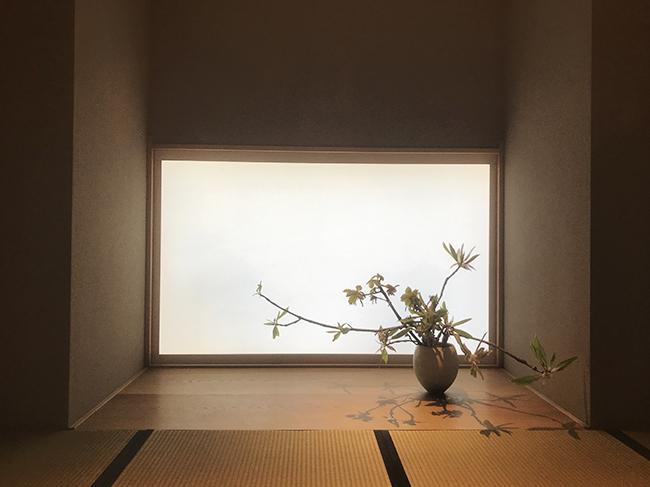 華道家の中村俊月による今週のお花「朴の木(ホオノキ)と柏」