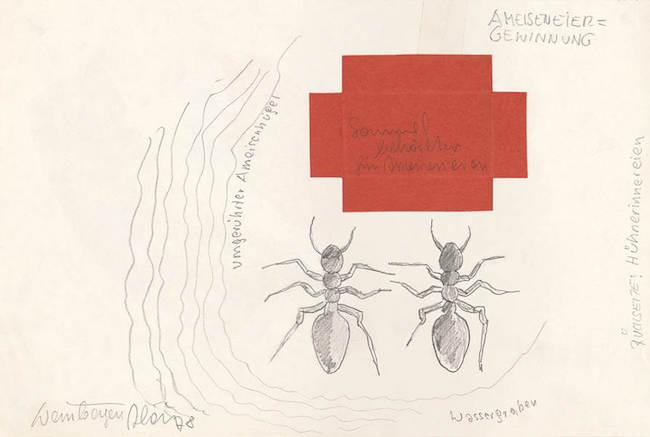 ロイス・ワインバーガー『堀とマッチ箱の助けを借りて蟻の卵を手に入れる』(1978年)