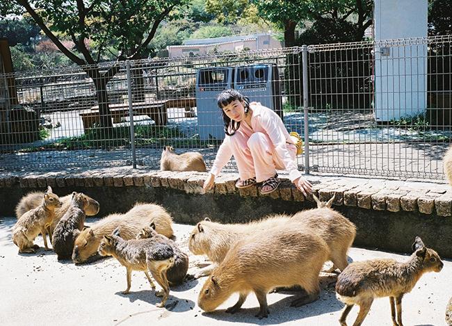 伊豆アニマルキングダムへ。アルマジロなど珍しい動物も放し飼いにされているふれあい広場でマーラとカピバラとともに。 「癒やし系!カピバラの家族と一緒に日向ぼっこ」