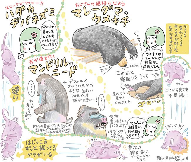 Illustration:Yukari Takinami
