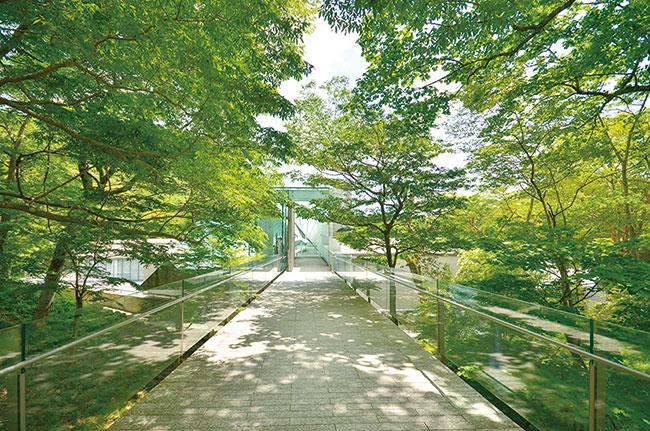 ポーラ美術館エントランス。富士箱根伊豆国立公園の自然を散策する「森の遊歩道」にも音響インスタレーション作品が展示される。