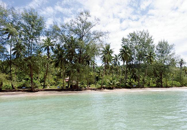 島の北部のロンリービーチチャレンジ。ヤシの木立ちの合間に見え隠れするバンガロー以外、何も人工物が見えないビーチ。