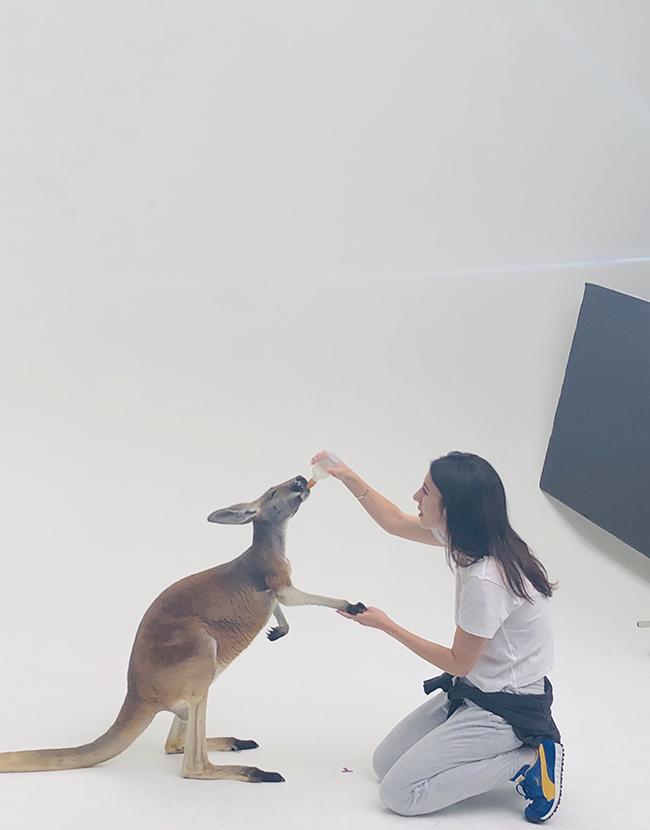 撮影中、優しくカンガルーに話しかけ、コミュニケーションを取るゾイ
