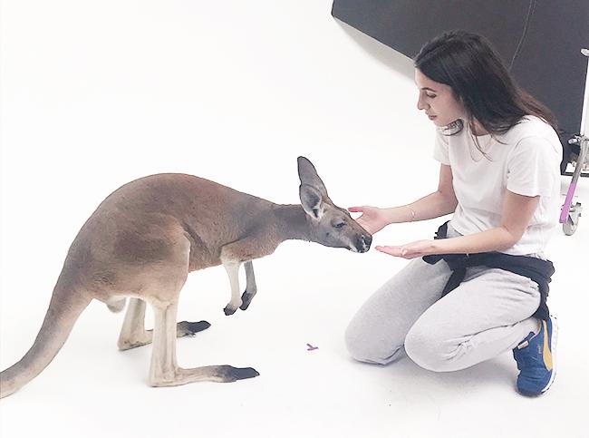 カンガルーと触れ合うゾイ