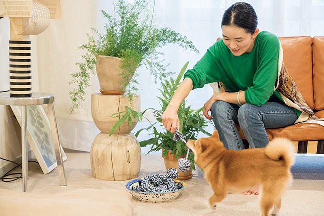 飼い犬のハチと過ごす癒やしのとき。噛まれないようにリビングの植物は最小限にしているそう。