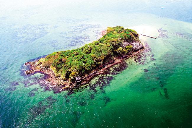 上空から見た猿島。