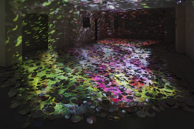 鬼頭健吾『ghost flowers』 (2018年) 「アートプロジェクト高崎」 photo:木暮伸也