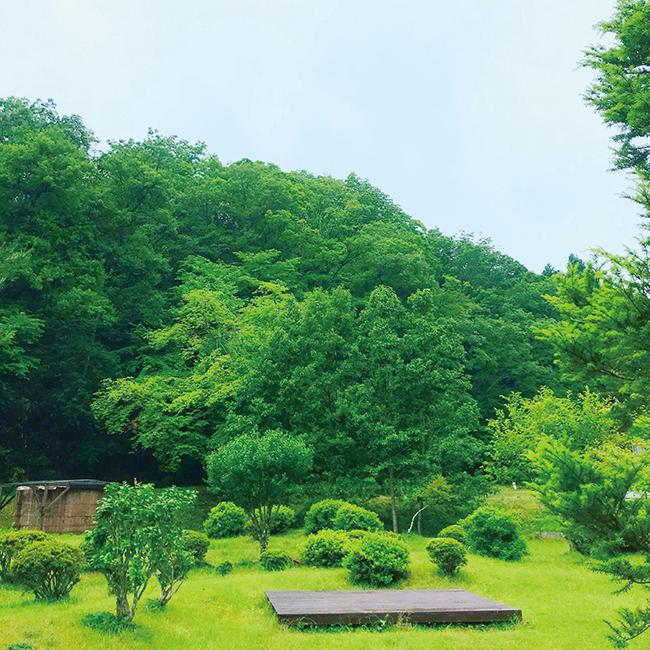 京都で行った「ヴィパッサナー冥想」10日間の修行。一言も喋らず、人と目も合わせない。