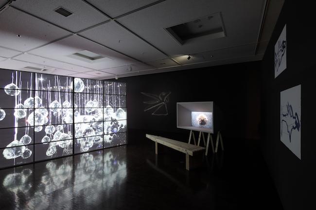 Photo by Takeru Koroda, courtesy of Kyoto City University of Arts  写真:来田 猛 提供:京都市立芸術大学