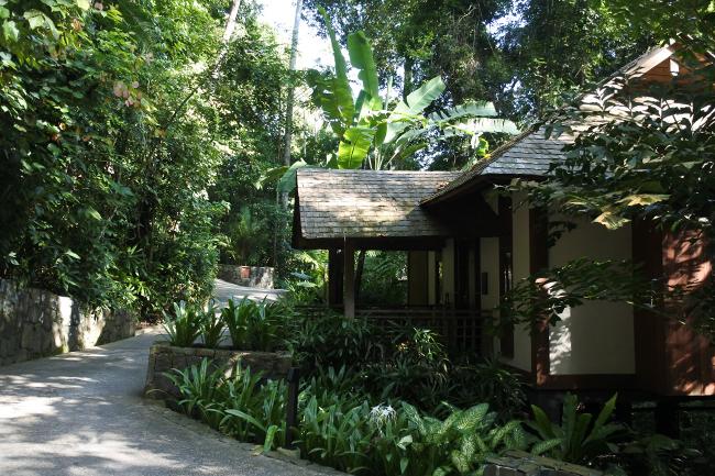 熱帯雨林の中に点在する「ザ・レインフォレスト・コレクション」。プール付きのタイプも。