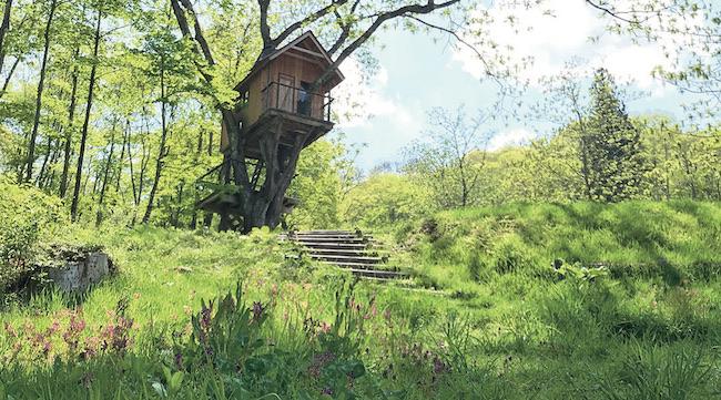 宿一帯のカミツレの里を散策するツアーを毎日開催(自由参加、無料)。